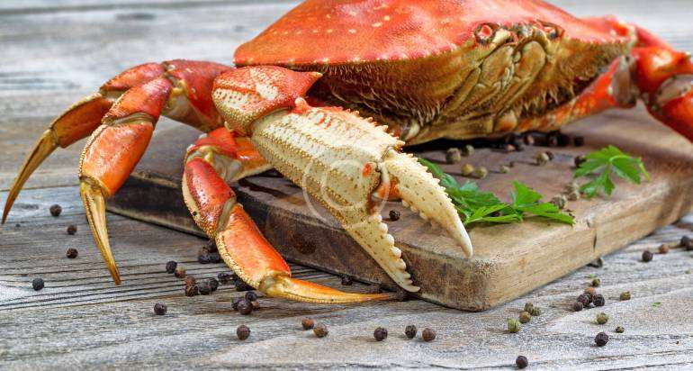 Delicate crab meat with the soft taste
